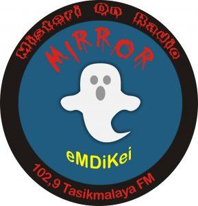 logo-mirror